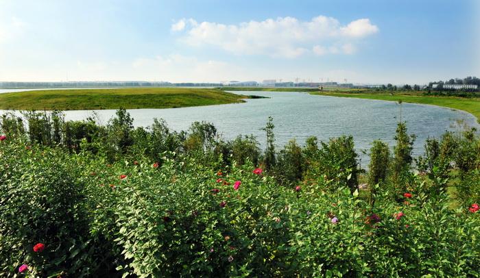 打造城水相融的生态休闲景观——济宁北湖景区起步区园林绿化工程