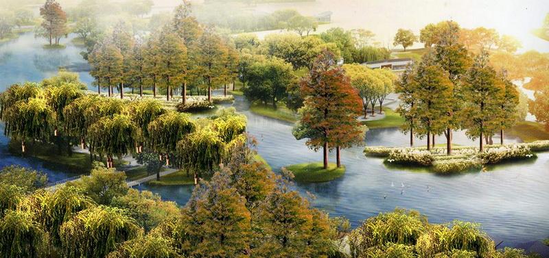 巢湖孙村湿地公园景观设计