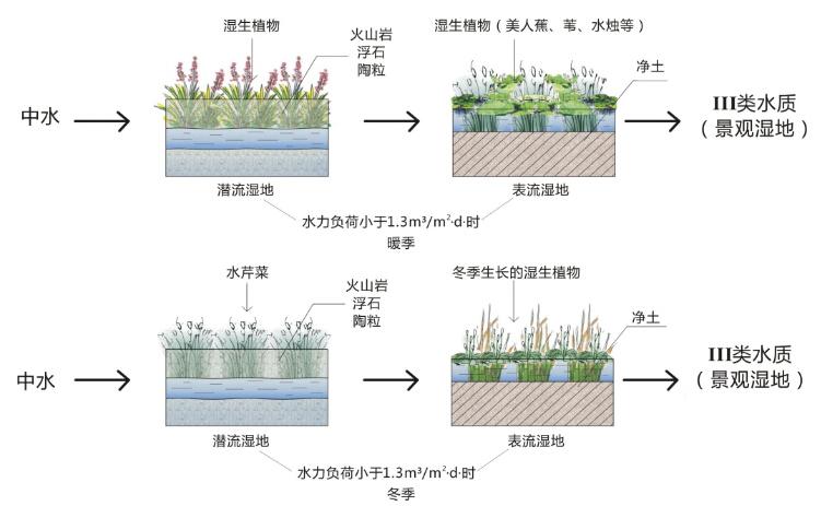 植物平面图图例柳树
